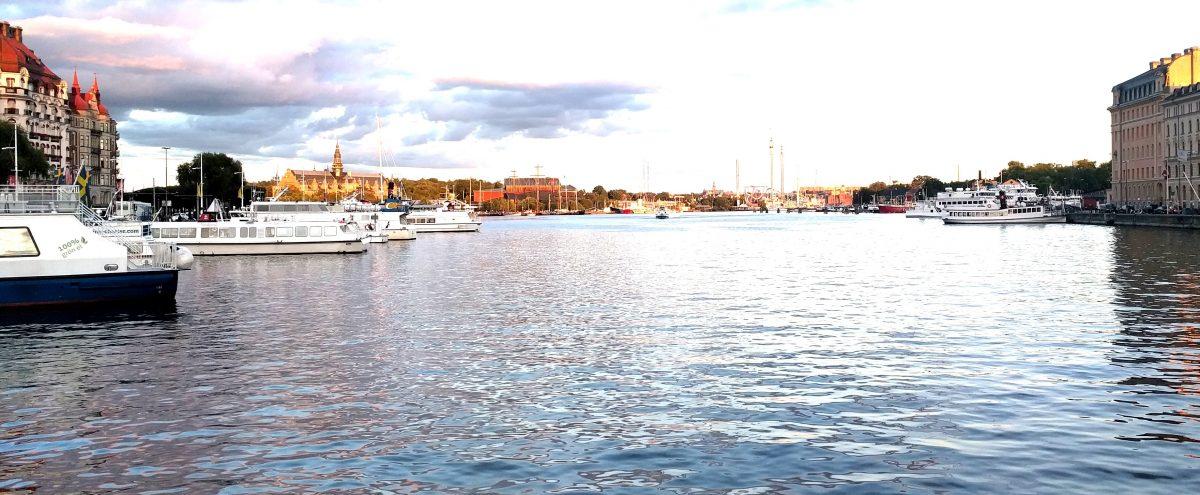 EIT Health/ACM SIGCHI eHealth Summer School 2017, week 2 in Stockholm and Uppsala