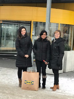 Visitors at the HTO group and IKEA Sightseeing